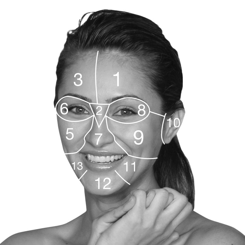 Face Mapping — A-Skin | Dermalogica | Kosmetikinsut | Stuttgart on