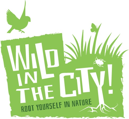 WitC.full logo.jpg