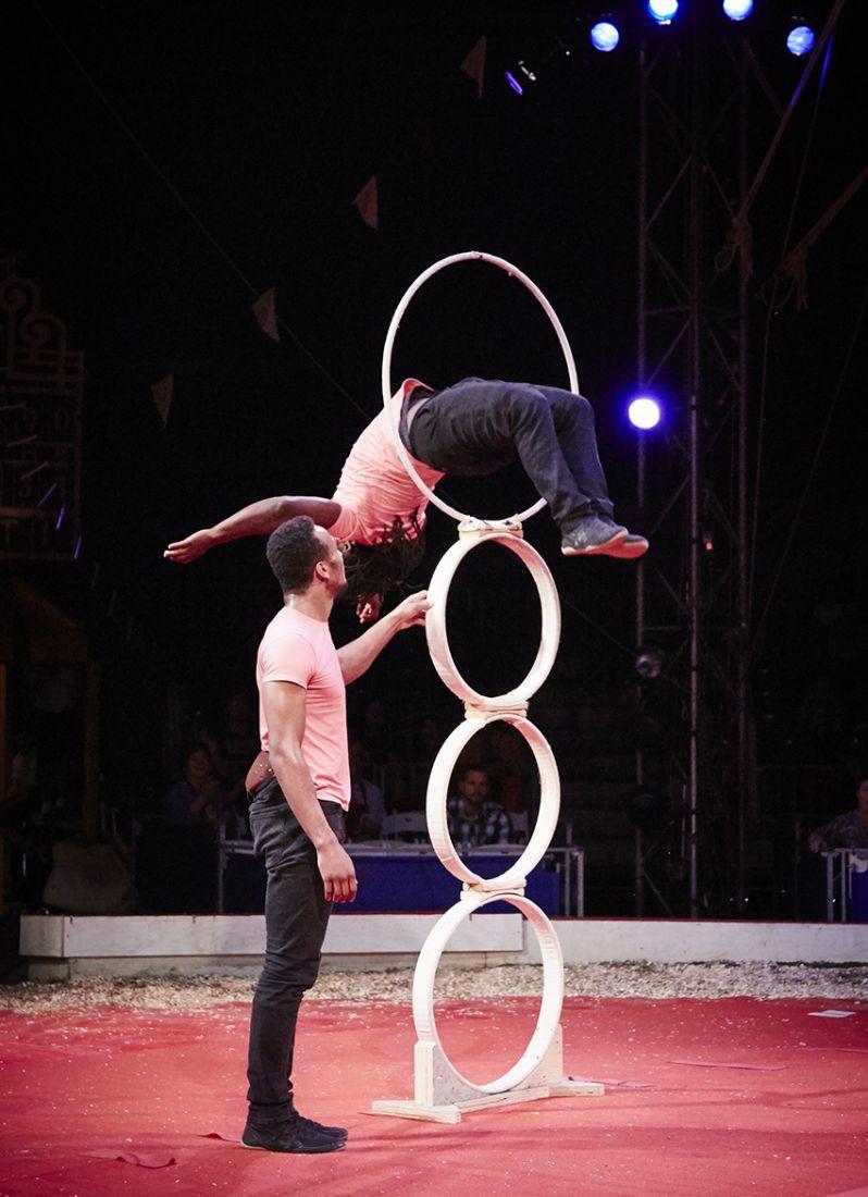STL_CircusFlora_STruesdell_06122016_006.jpg