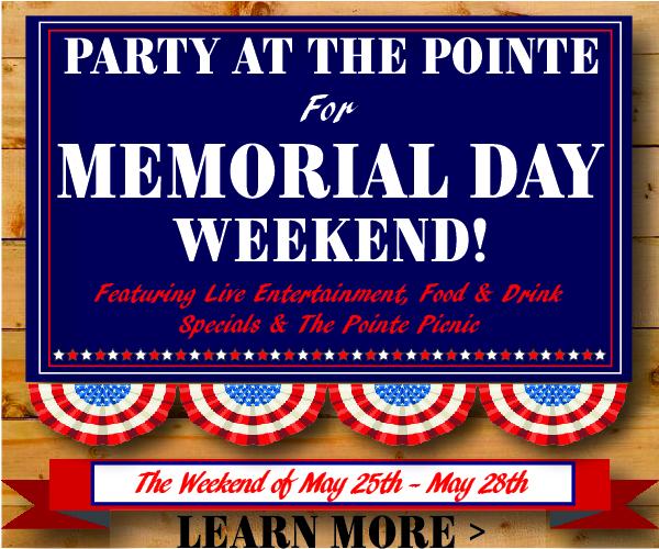 PartyAtThePointeAsset2Artboard 3@2x-100.jpg