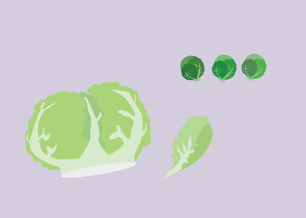 lettuce and sprouts.png