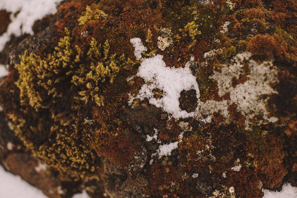 Road-trip-Islande-Iceland-Voyage-Travel-Portrait-Jérémy-Boyer-Geysir-Geysers-Horse-snow-ice-Gullfoss-12.jpg