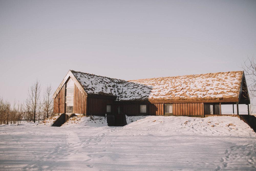 Road-trip-Islande-Iceland-Voyage-Travel-Portrait-Jérémy-Boyer-Sunny-day-dog-snow-2.jpg