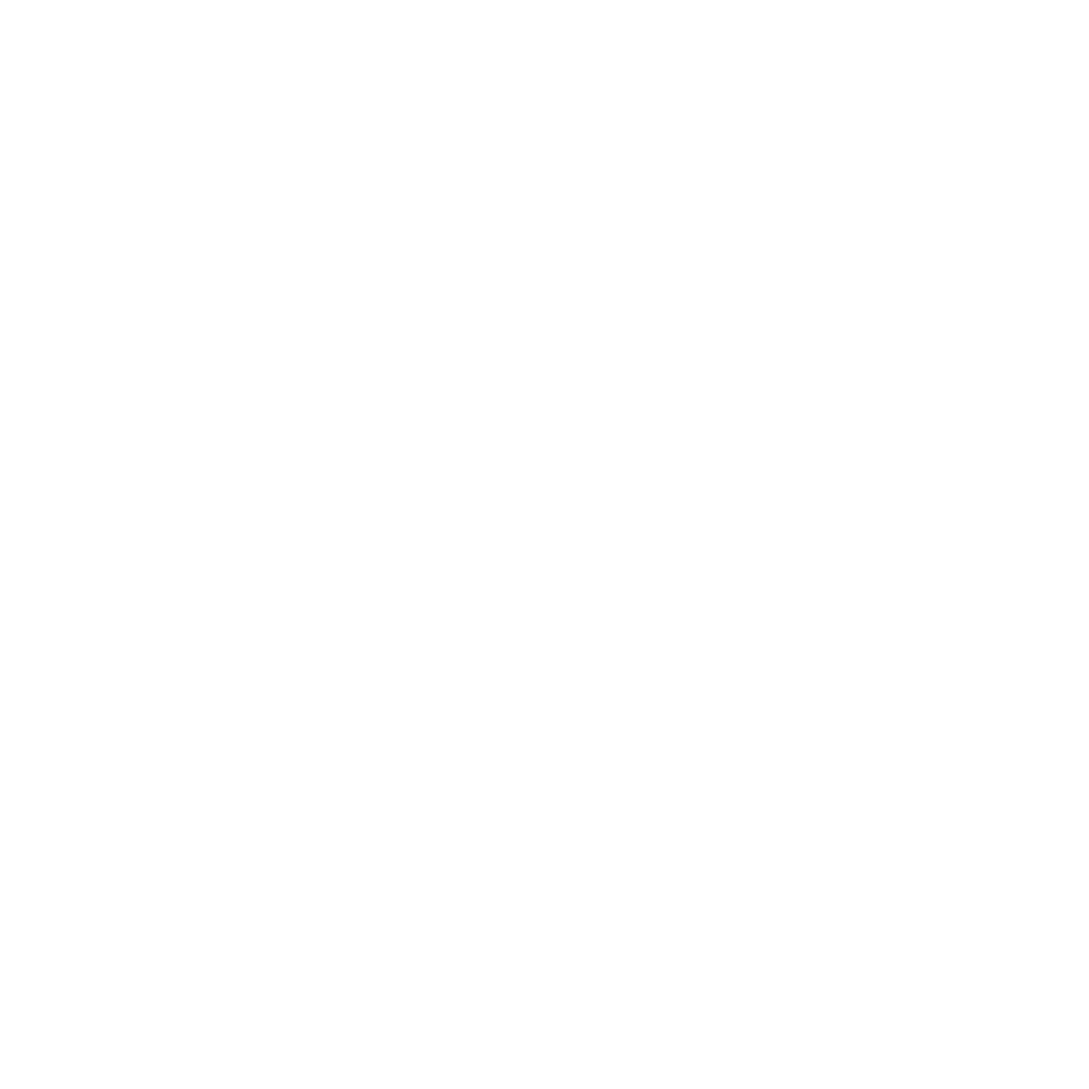 the-brooklyn-project-logo-white-transparent.png