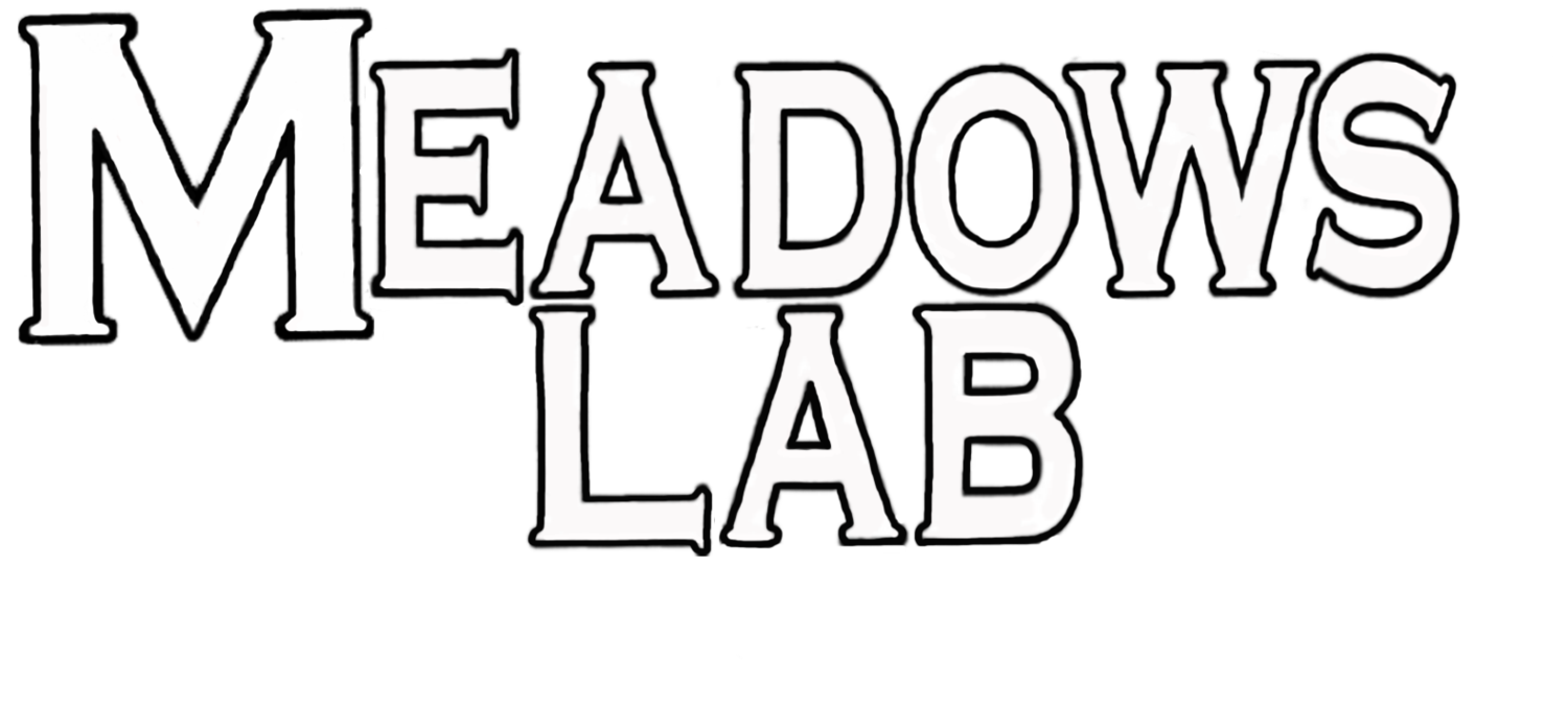 The Meadows Lab