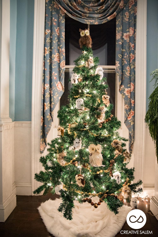 Christmas in Salem Ealry Preview-4629.jpg