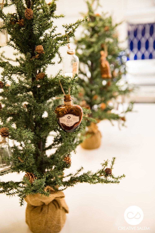 Christmas in Salem Ealry Preview-4723.jpg