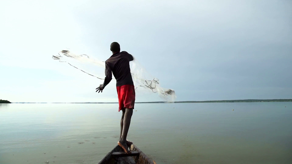 an-african-fisherman-casts-with-skill-a-wide-fishing-net-on-his-canoe-about-fishing-fish-tradition-traditional-environmentally-sustainable-procure-food-wild-life_bfea8mwre_thumbnail-full01.png