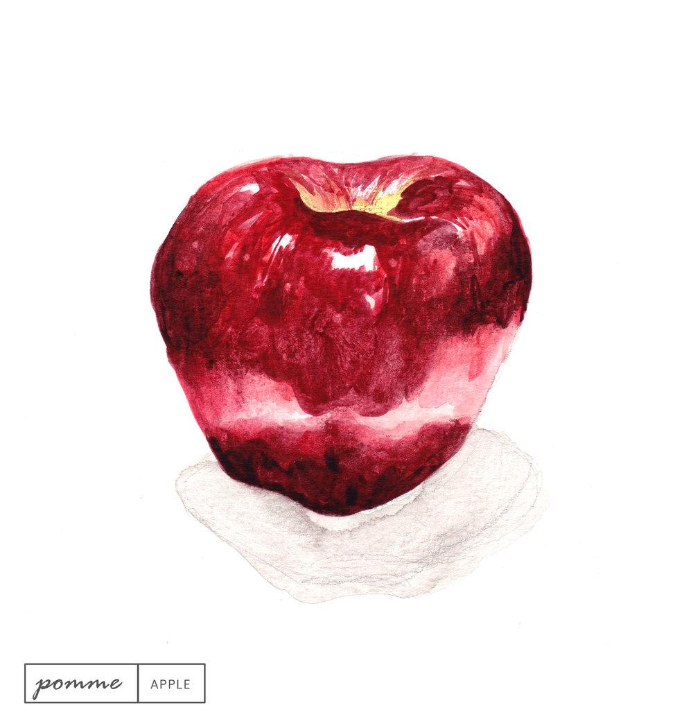 Laetitia_Eaton_watercolor_apple