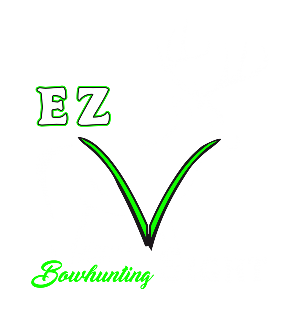 ezvsight logo.png