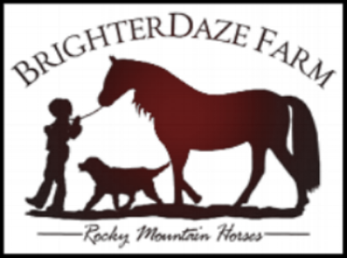 BrighterDaze Farm - Horse Boarding, Newark Il, Private Trail Rides, Weddings and Events