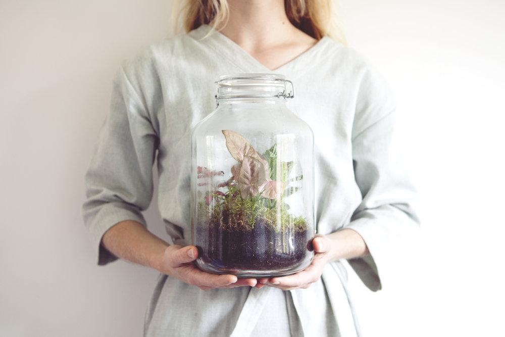 - Ik ben een planten-blogger met een missie:De internetgeneratie inspireren metSuper Groene Vingers!