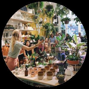 Foto: Mama Botanica in Wildernis Amsterdam