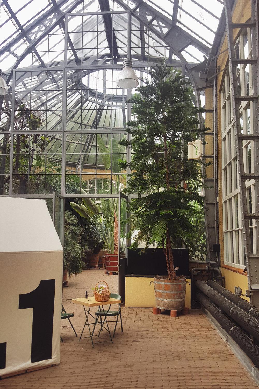 Hortus Botanicus Mama Botanica_07b.jpg
