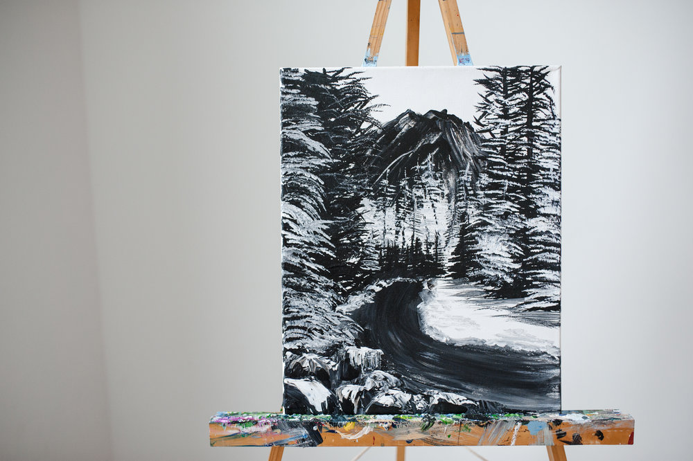 BLACK AND WHITE WINTER SCENE -