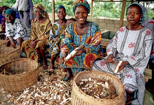 cassava_women_nigeria.jpg