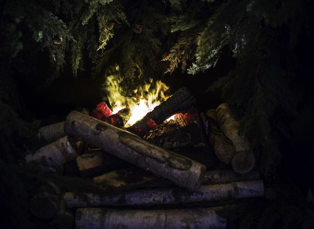 NDD Campfire (5).jpg