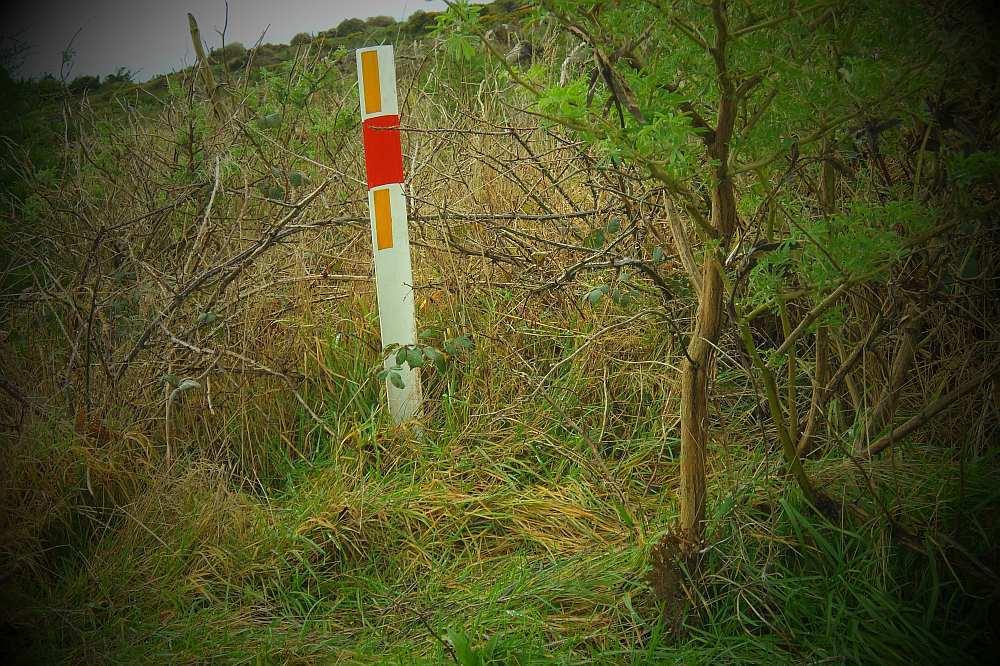 Track marker at Fosbender Park