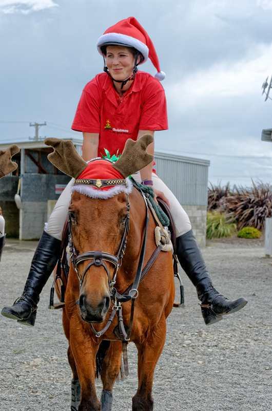rudolf-the-racehorse-copy.jpg