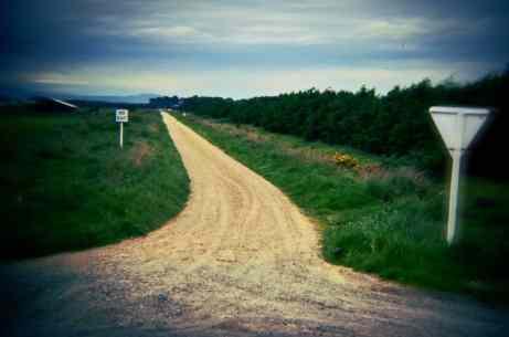 no-exit-road-holga.jpg