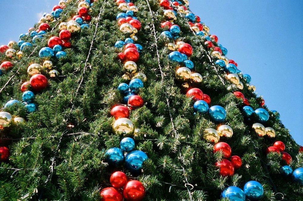 Wachner Place Christmas tree
