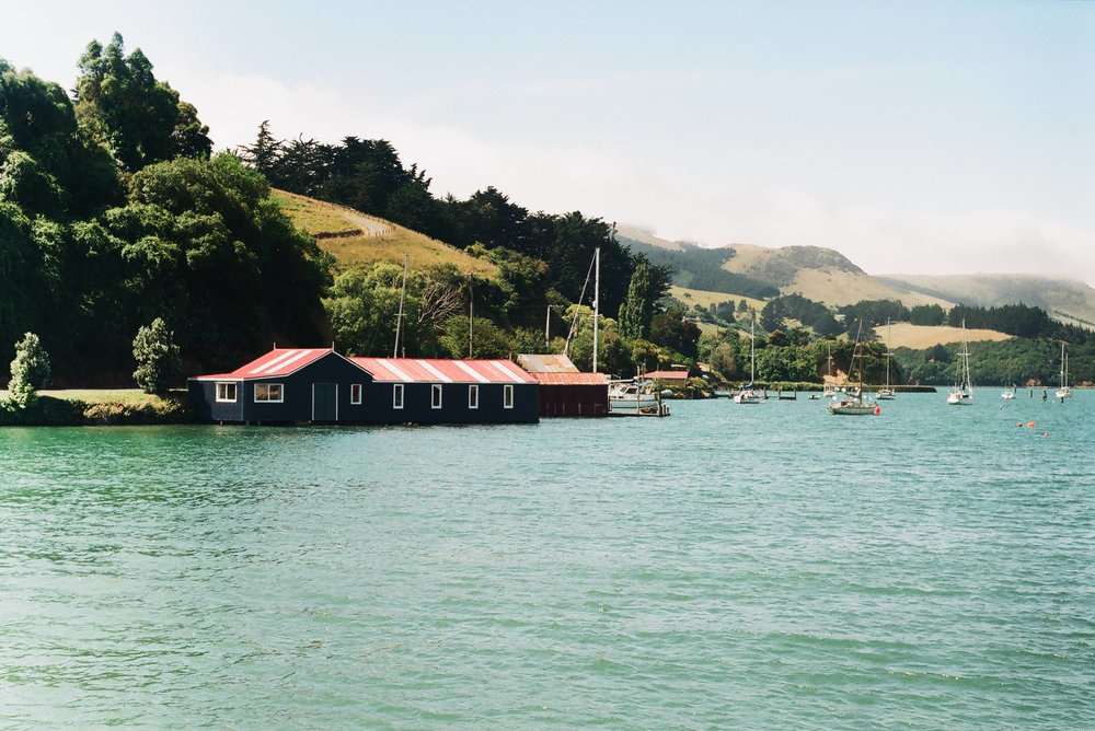 Carey's Bay boatshed