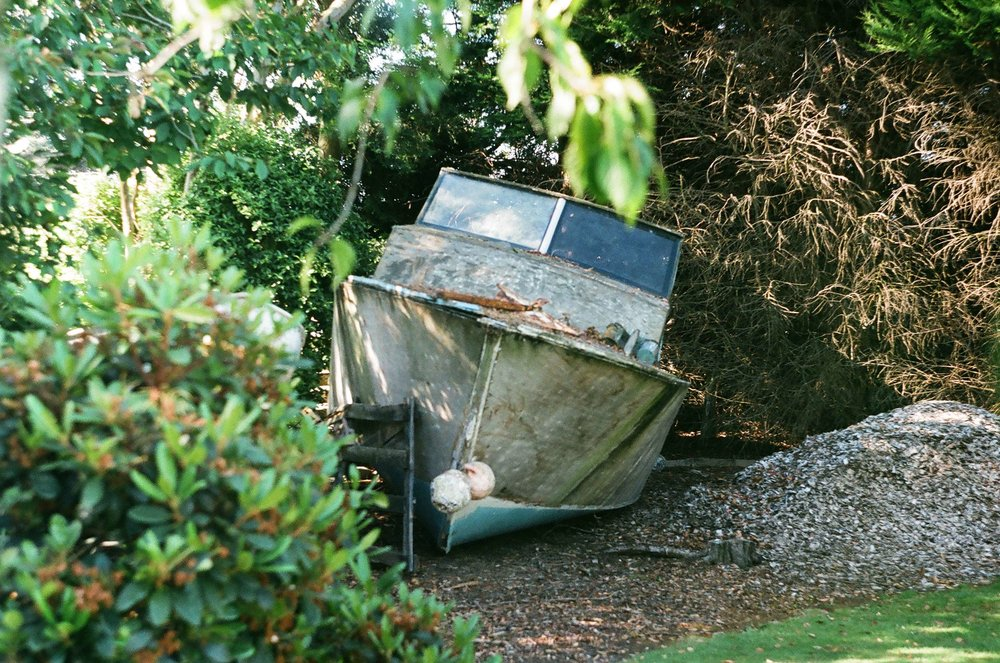 An old boat gathers moss in a backyard garden