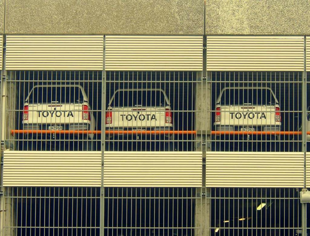 25-caged.jpg