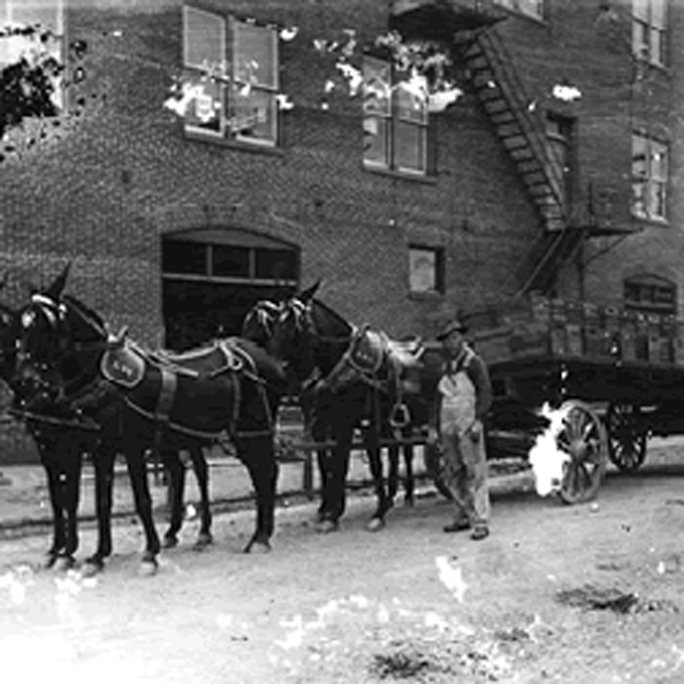 02_Horses & produce wagon_crop_02.jpg