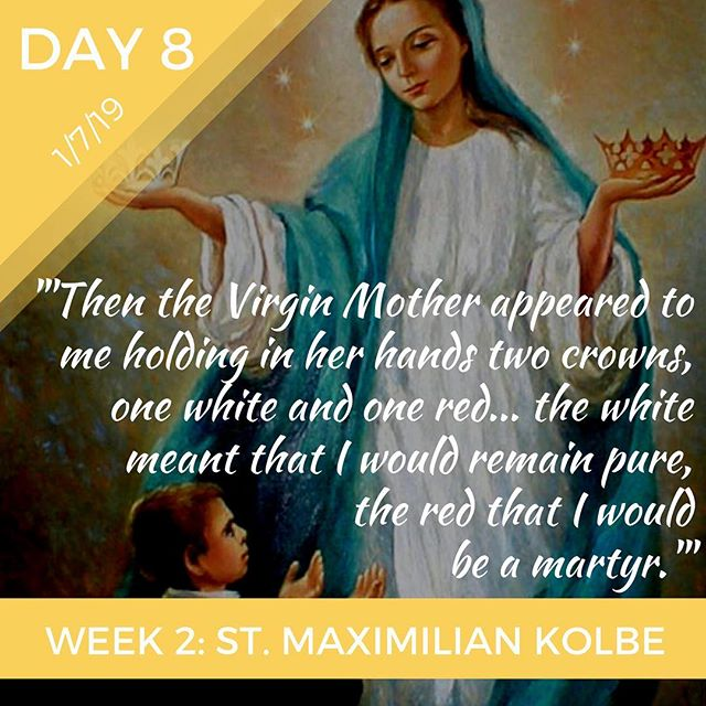 St. Maximialn Kolbe➡️ Purity or martyrdom?  Us ➡️ Happiness or holiness?  It may initially appear that we must choose one or the other, but St. Maximilian Kolbe shows us we can choose both. #FoodForThought #33daystomorningglory #day8 #catholicretreat #catholic #blessedvirginmary #marymotherofgod #stmaximiliankolbe #youngadult #retreat #spiritual #holiness #tojesusthroughmary #marianconsecration #bostoncatholic