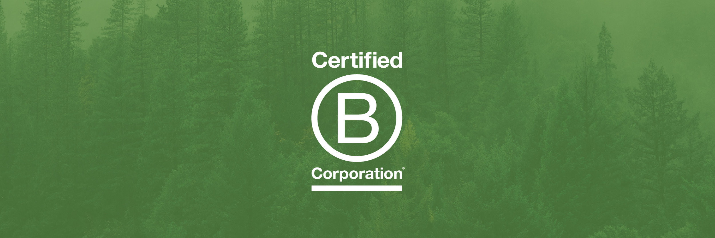 Celebrating Our Own B Corp Certification Heather Paulsen Consulting