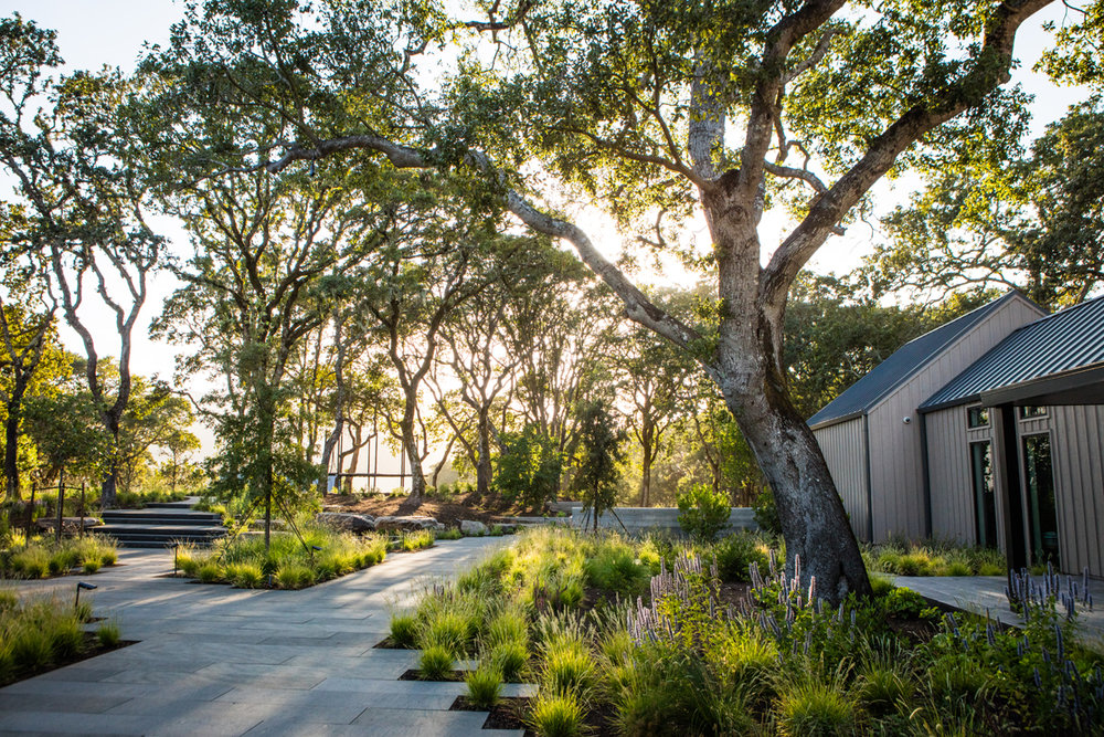 Editing And Careful Site Analysis Was The Key To The Success Of This  Remodeled Home And Estate Grounds. The Slow Removal Of Exotic Trees And  Shrubs That ...