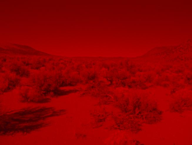 From Laida Lertxundi's film Sunset Red. Source:  CanadianArt