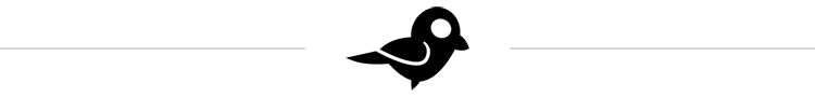 insert+bird.jpg