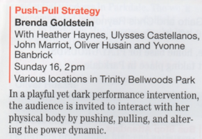 Brenda Goldstein Push Pull Strategy2.png
