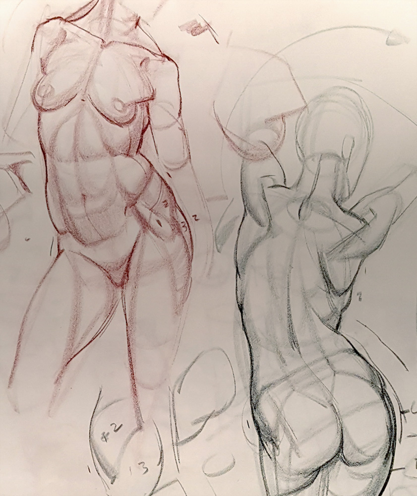 ANALYTICAL FIGURE DRAWING -