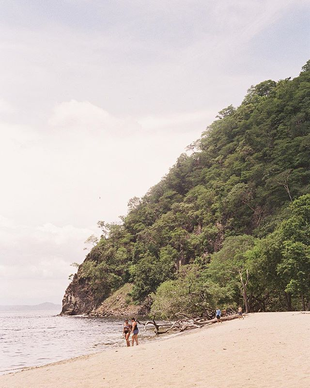 Costa Rica beach on #35mm film 🌅 I am planning on traveling someplace warm very soon, accompanied ofc by loads of film! Any recommendations :)? I am thinking Cuba 🇨🇺💃🏻🌴 . . . . . . . . .  #weddingphotographer #weddingphotographers #fineartphotographer #engagementphotographer #fineartweddingphotographer #destinationweddingphotographer  #torontoweddingphotographer #torontoweddingphotography #chicagoweddingphotographer #chicagoweddingphotography #destinationweddingphotographer #weddinginspiration #mamiya645 #ishootfilm #filmphotography #fineartwedding #whitbywedding #torontoengagementphotographer #canadianweddingphotographer #ontarioweddingphotographer #filmshooter #costarica #nature #landscapephotography #richardphotolab #ipreview via @preview.app