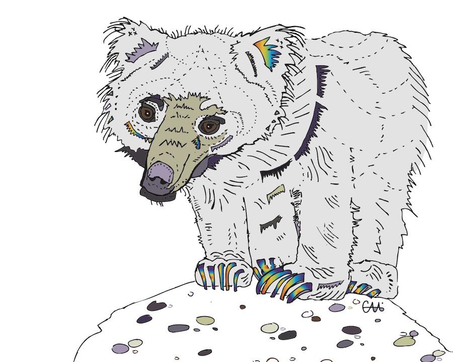 8x10 sloth bear no border.jpg