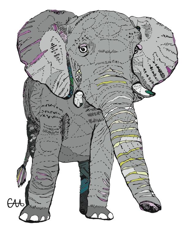 elephant grey.jpg