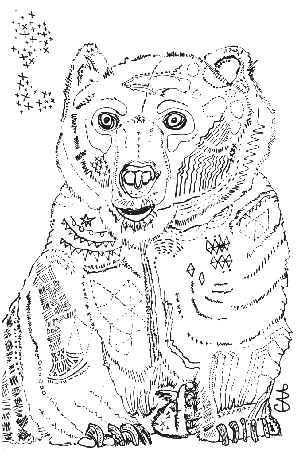 11x17 Star Bear.png