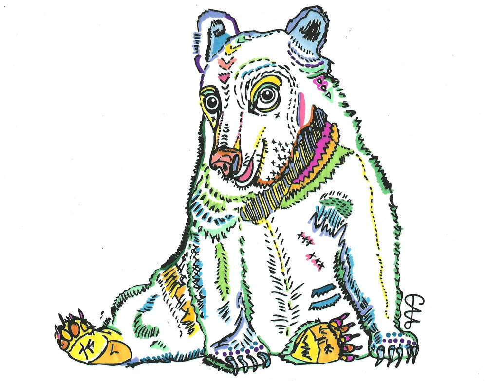 colour bear 2.jpg