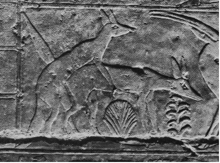 Image of the Jackals? Hyenas? getting it on in the hunting scene from the walls of the tomb.