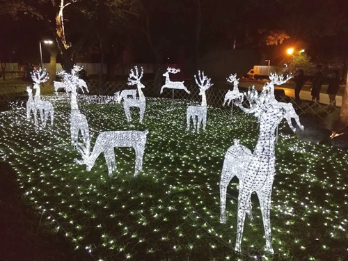 首次在屏東公園舉辦的聖誕燈節  利用聖誕燈飾加入北歐風格設計  讓這座超過百年歷史的公園帶來北國的聖誕光景  在12月的日子裡點亮了南臺灣熱情的聖誕節  pic/屏東縣政府