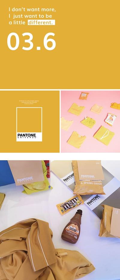 PAZZO_PANTONE (5).jpg