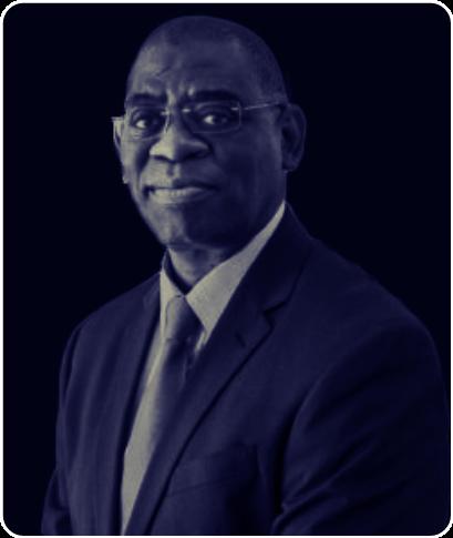 DR. HONORATI MASANJA  Honorary Members    LINKEDIN