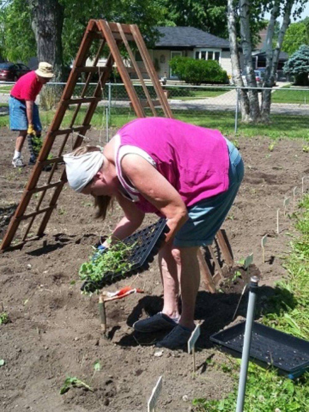 sppc_gardening_02.jpg