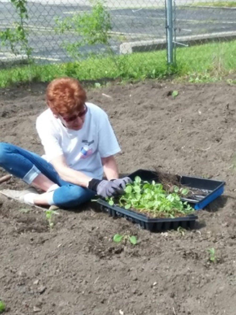 sppc_gardening_06.jpg