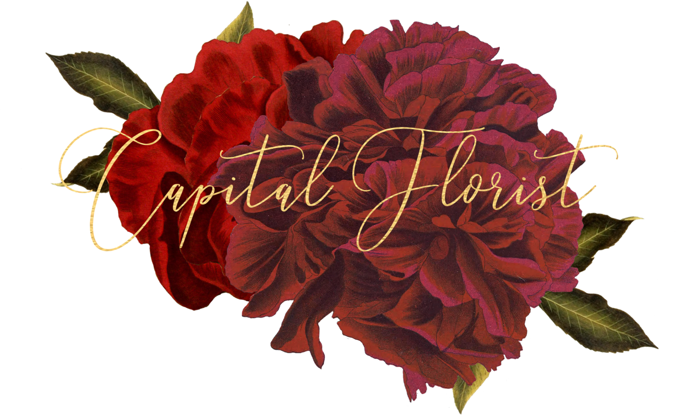 Florist capital florist izmirmasajfo Gallery
