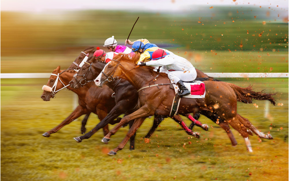 Simulcast 2018 Kentucky Derby Prep Races at   Pensacola Greyhound Track & Poker Room