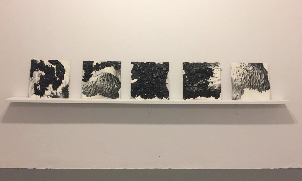 Anika Kowalik,  Studies (1-5)